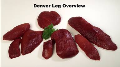 Denver Leg Overview